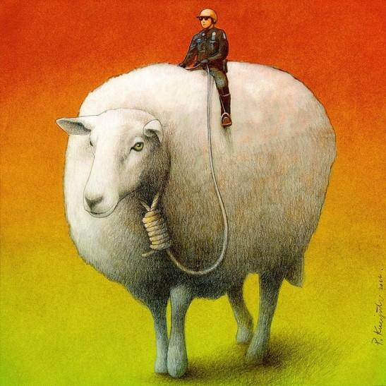 Sheep Control Pawel Kuczynski 36