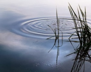 Old Pond (1) by Basho