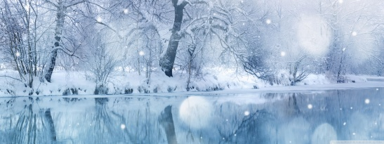 502995-winter