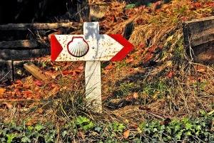 Camino-Sign-Oct07-D2270sAR800