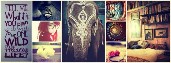 Collage 20.jpg
