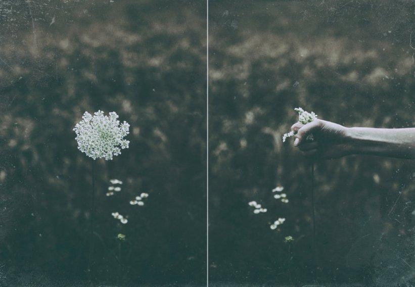 Anna O. Photography
