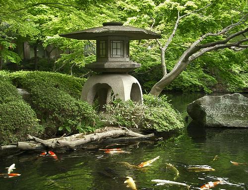 -japanese-garden-_37020_37020