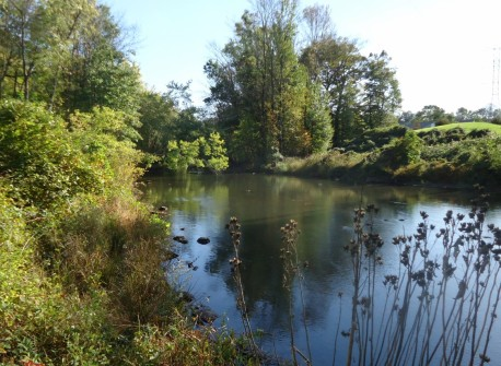Passaic_River_between_Summit_and_Chatham_New_Jersey