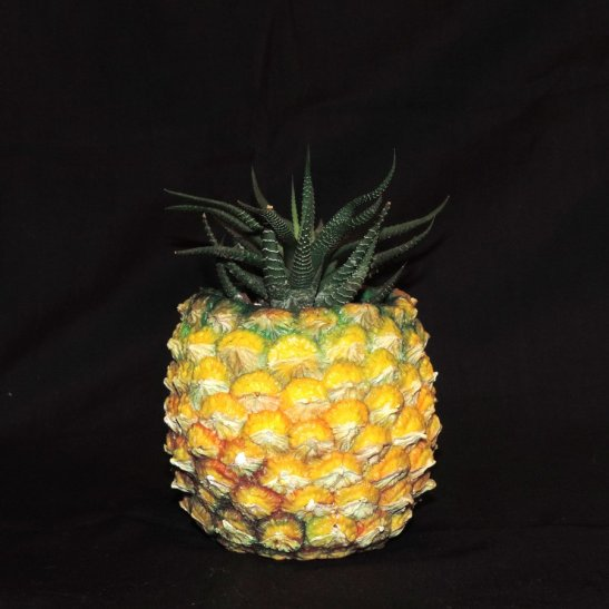 pineapple_planter_by_ethereal_beings-db89yxq