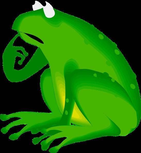 Amphibian-Green-Thinking-Animal-Worrying-Frog-48234
