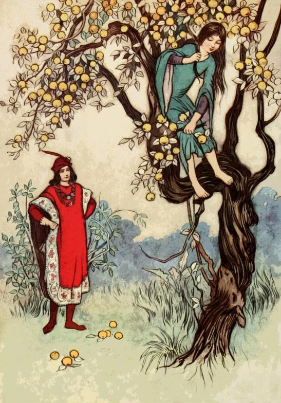 climbing-a-tree