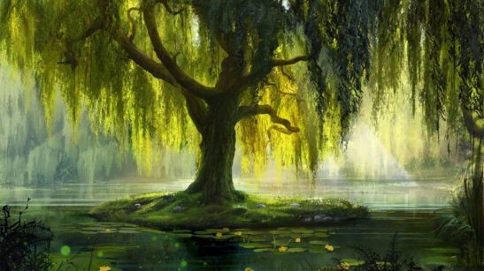 xinature.com-misc-pond-bath-waterlilies-painting-willow-artwork-leaves-tree-wallpaper-gallery-960x540.jpg