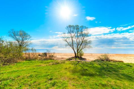 scenery-warm-sunny-day-beautiful-41156600