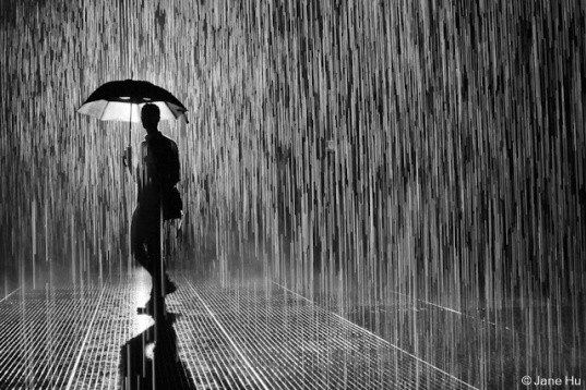 rain-room-nyc-untapped-cities-jane-hu-2