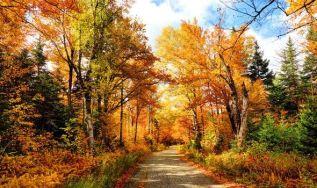 start of autumn