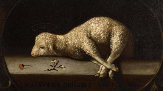 The Sacrifical Lamb