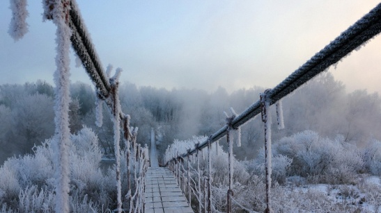 ws_Frozen_Bridge_&_Winter_Trees_1920x1080