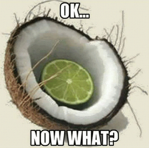 Lime in a coconut