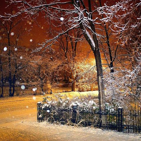first-snowfall-daniel-berman